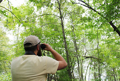 Birdwatchers from around the region flock to Rice Creek Chain of Lakes each spring to see scores of migratory bird species.