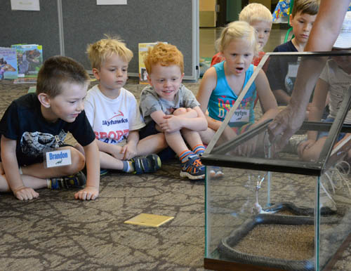 "Park agencies are encouraged to target more funds to activities like programming for youth and families under the Legacy plan's priority of ""connecting people and the outdoors."" Pictured here are children visiting the Eastman Nature Center at Elm Creek Park Reserve in Maple Grove."
