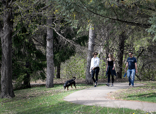 Three people walking with a dog on a paved path through a park.