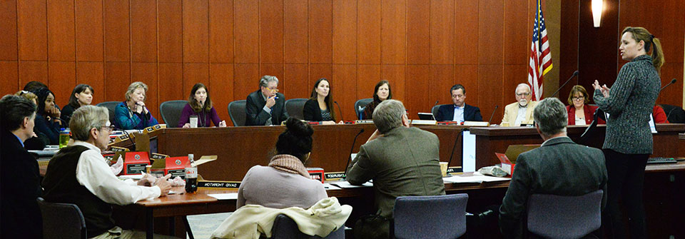 Advisory board members in a meeting in Council Chambers.